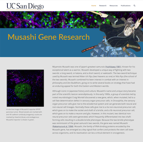 Musashi Gene Research website image